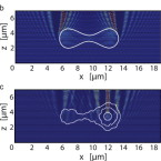 Complex optical forces: towards the optical sorting of biological matter