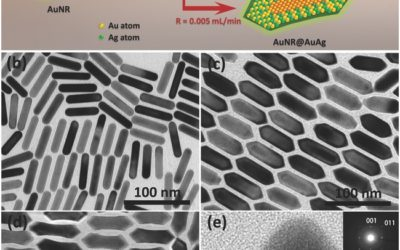 Homogeneously Alloyed AuAg Shell with tunable Surface Plasmon Resonances