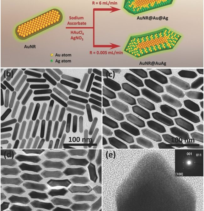 Homogeneously Alloyed AuAg Shell with tunable Surface Plasmon Resonances