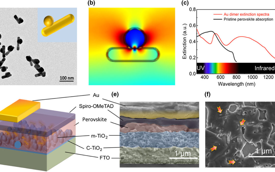 Plasmonic-Enhanced Light Harvesting with Broadband Structural Darkness